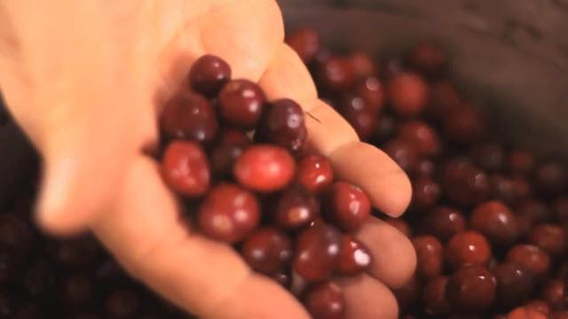 Cranberry Sauce (Time 0_02_45;17)