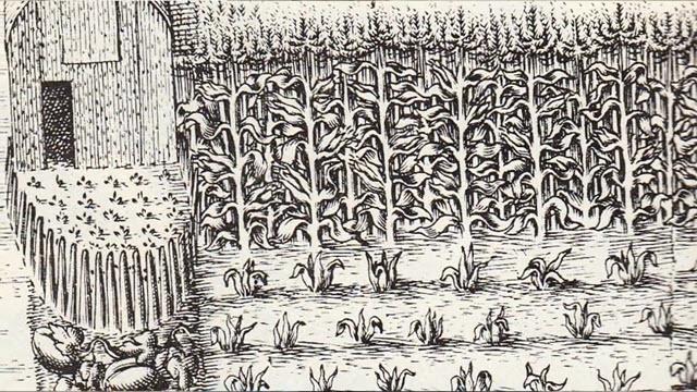 Cornbread (Time 0_02_39;10)